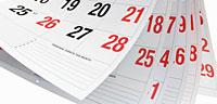 Calendario del contribuyente 2013
