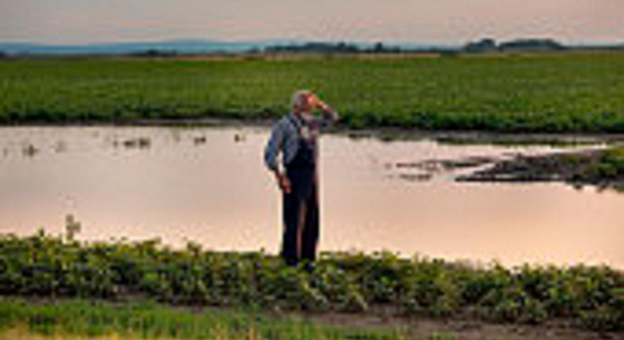 Actividades agrícolas y ganaderas: reducción módulos IRPF 2020. Imagen de un agricultor