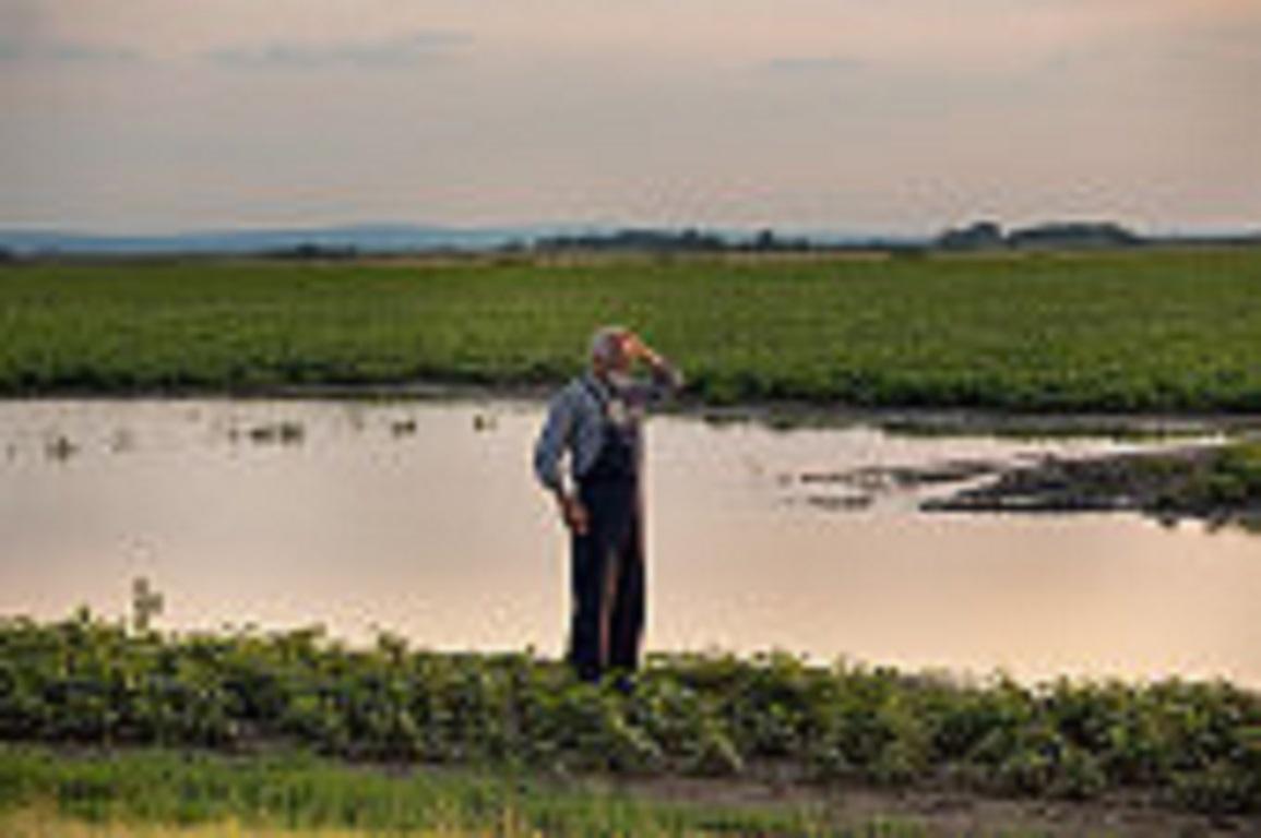 Reducción de módulos del IRPF para 2019 por las actividades agrícolas y ganaderas afectadas por circunstancias excepcionales
