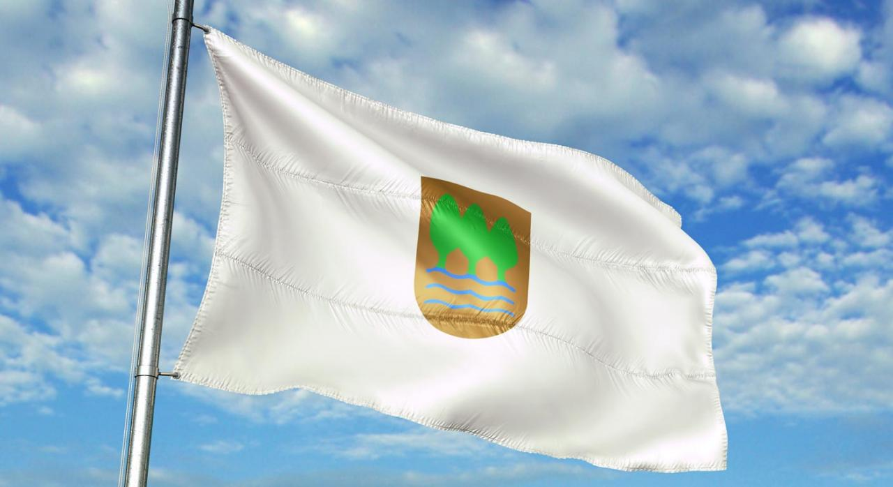 Gipuzkoa aprueba un nuevo reglamento de gestión tributaria. Imagen de la bandera de Gipuzkoa