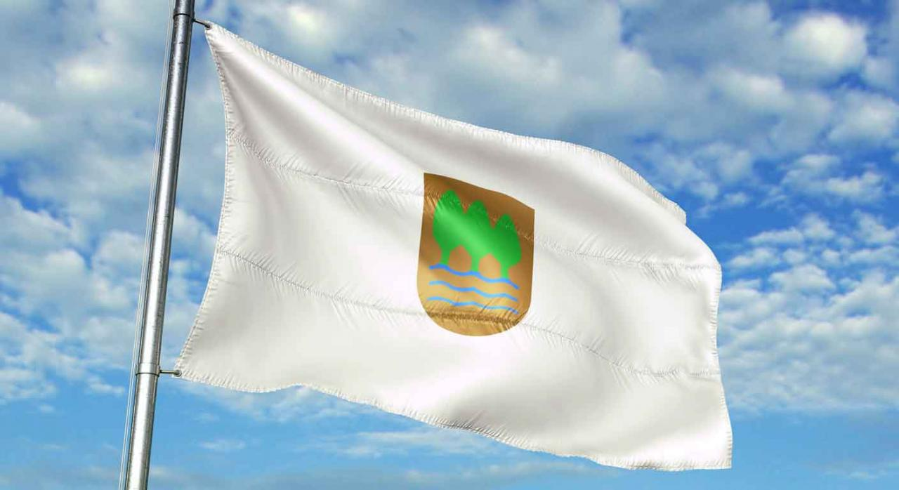 Plazos, medidas tributarias,  COVID-19, coronavirus, Gipuzkoa. Bandera de Guipuzkoa