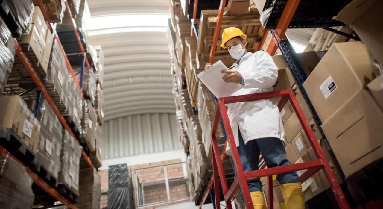 Material para covid19, Canarias. Imagen de almacén con un trabajdor protegido para covid 19 y subido en una escalera