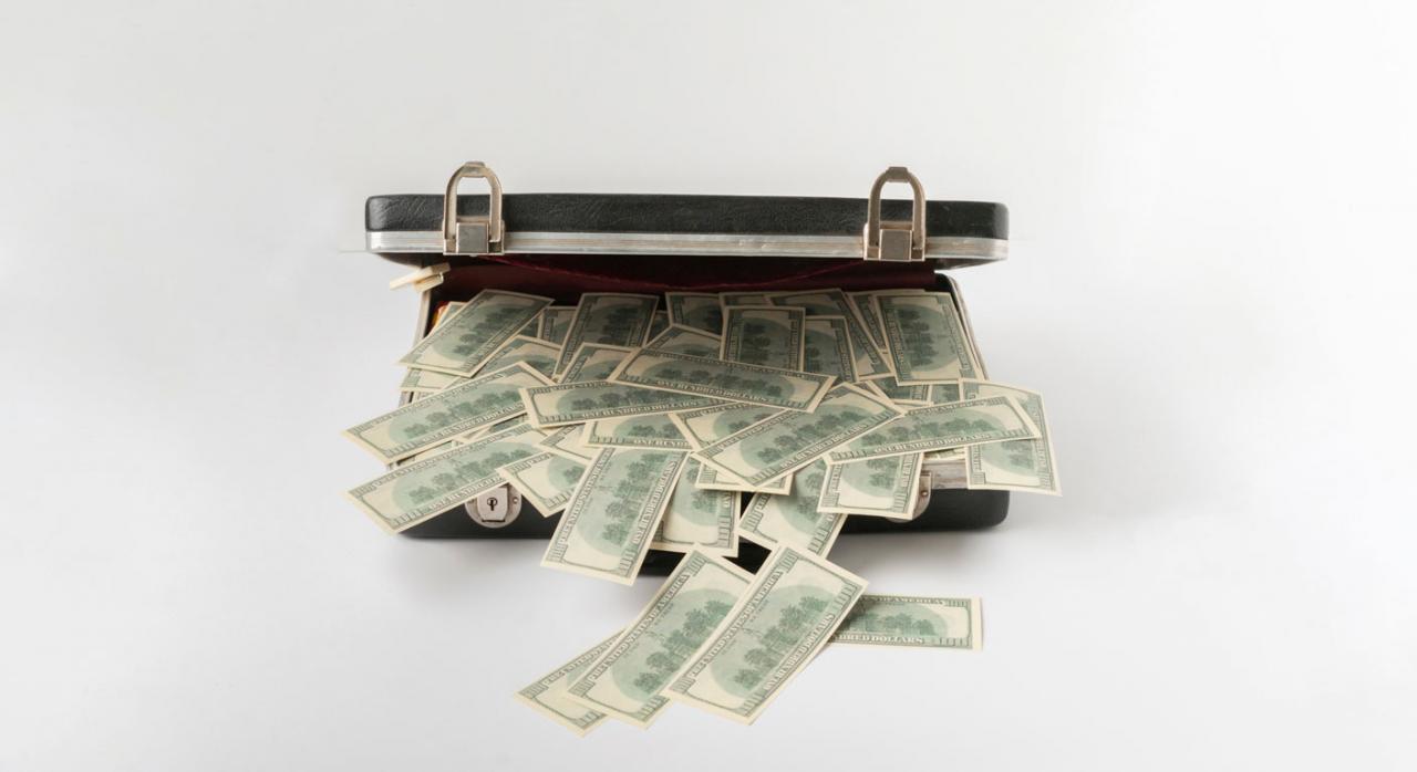 Tributación de la repatriación de los beneficios obtenidos por los establecimientos permanentes a la casa matriz. Imagen de maletín abierto con dinero en efectivo
