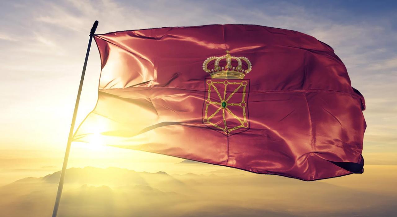 Medidas fiscales 2020. Imagen de bandera de Navarra