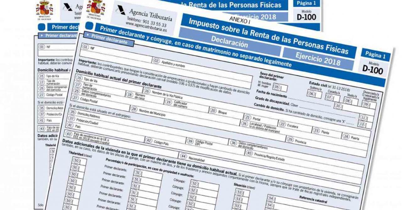 Modelos de Renta y Patrimonio 2020 (Proyecto). Imagen de un modelo de renta