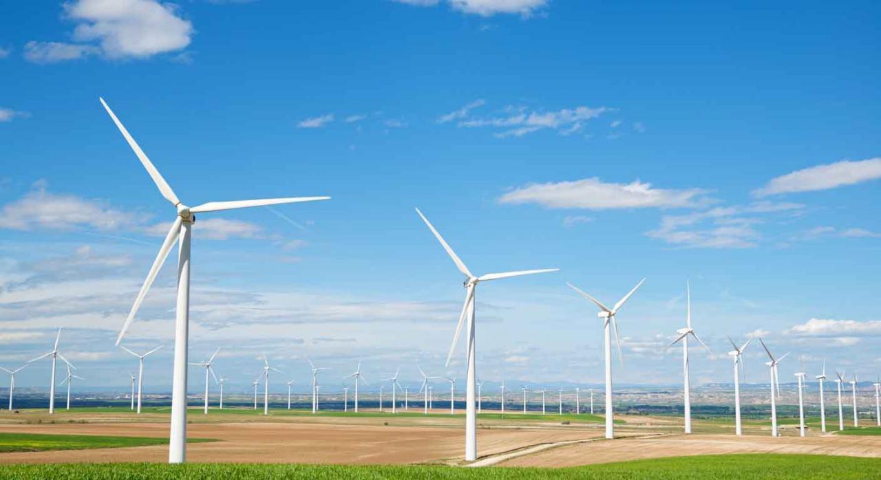 TS, Valencia, Impuesto sobre actividades sobre el Medio Ambiente, generalidad, capacidad económica, igualdad, derecho, UE. Molinos de viento en un campo soleado