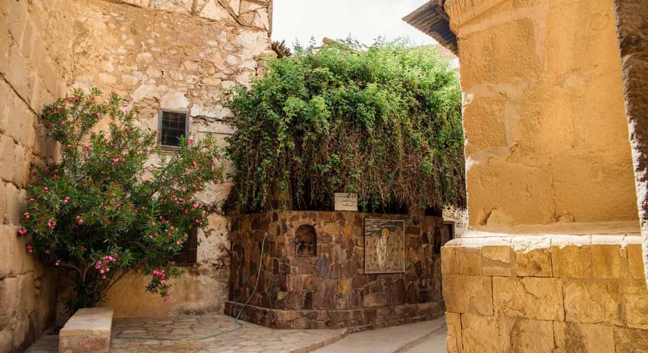 Patrimonio Histórico. Monasterio de Santa Catalina
