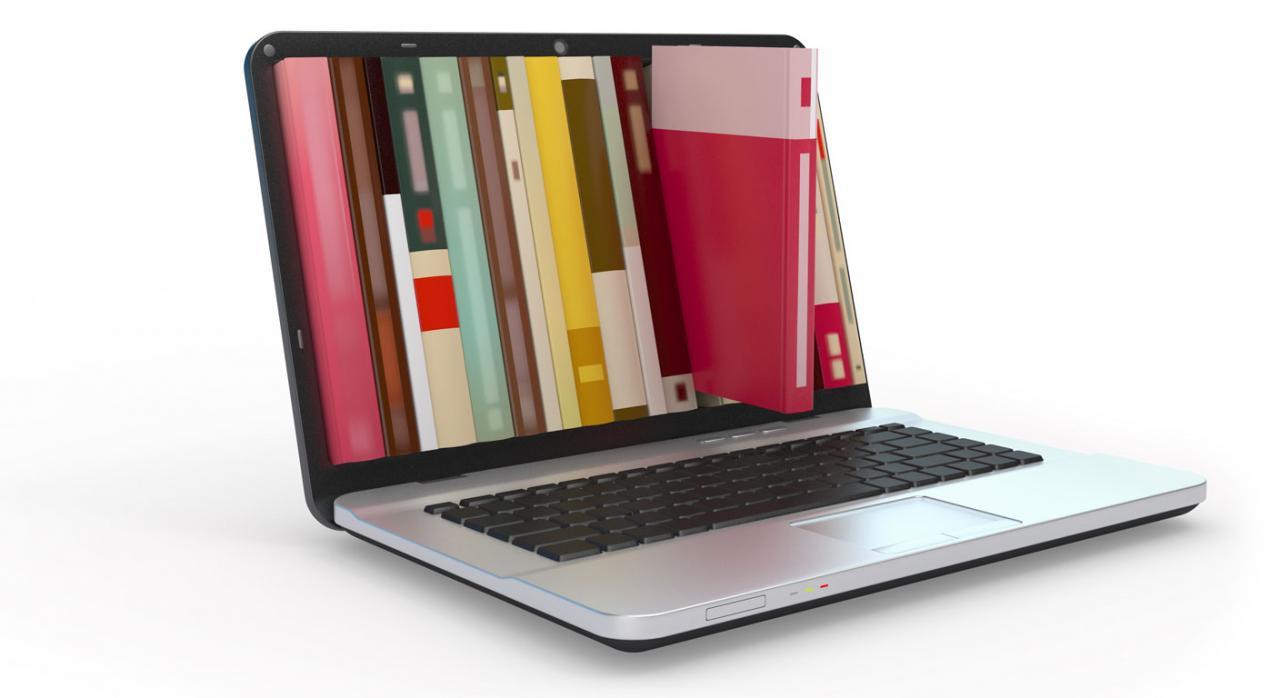 Contabilidad de productos en los Impuestos Especiales de Fabricación. Biblioteca digital en la pantalla de un portátil