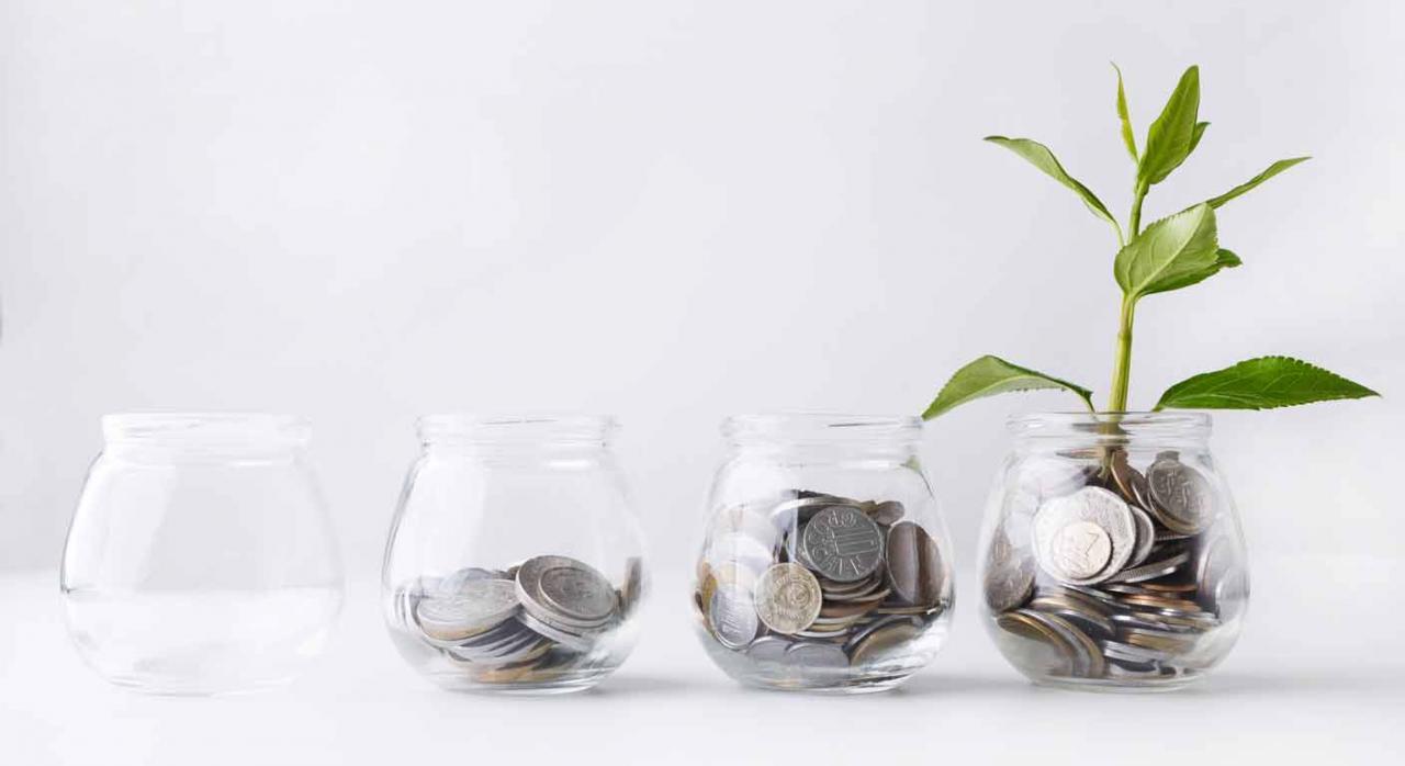 Varios tarros de cristal con monedas y en uno de ellos crece una planta