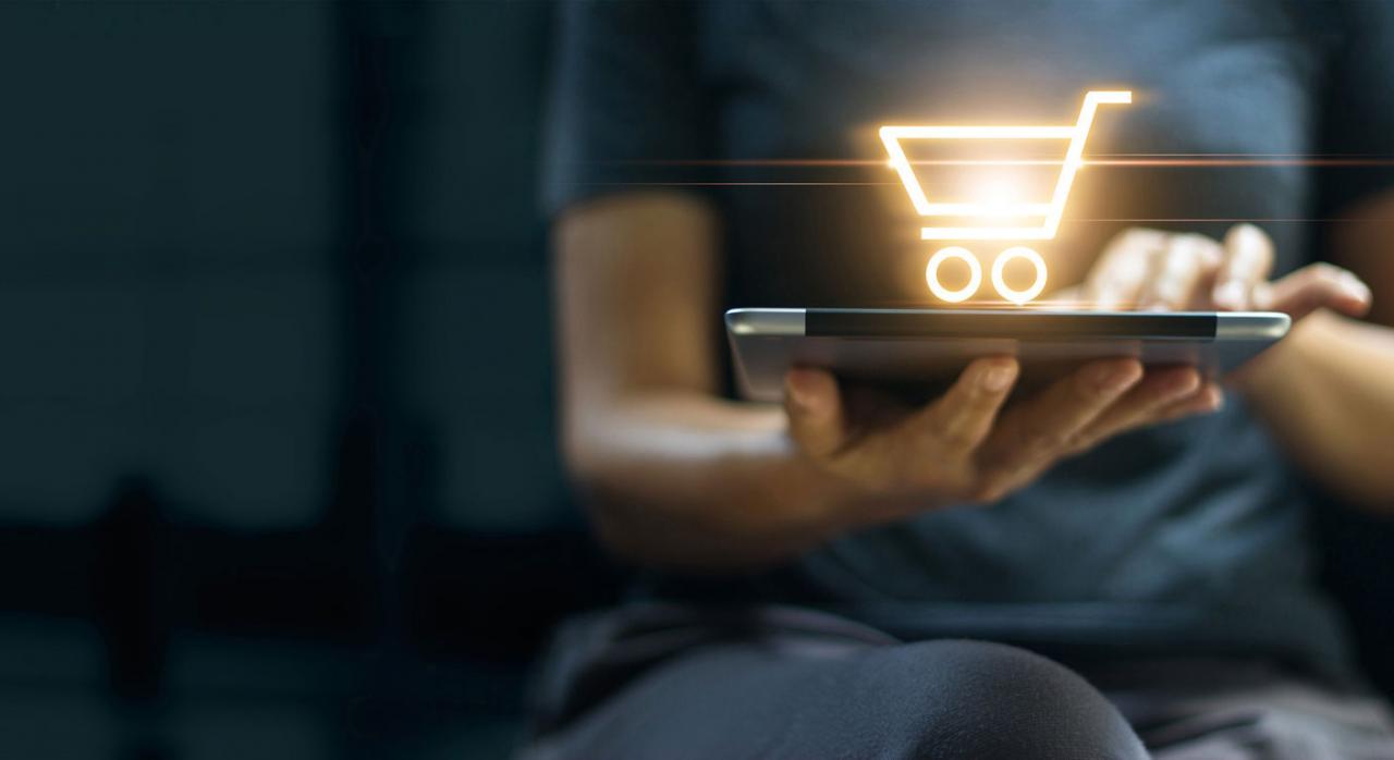 Trasposición de las directivas de IVA sobre ventas a distancia en Bizkaia. Imagen de portátil con icono de carrito de compra online superpuesto y en las manos de una mujer